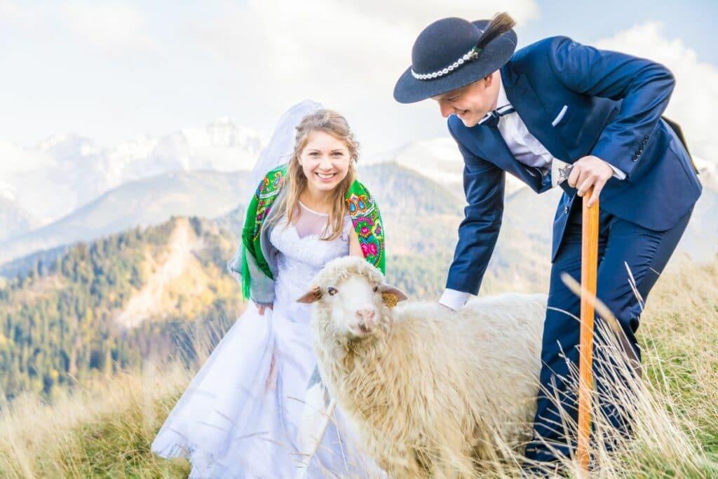 Górska sesja ślubna z nieoczekiwanym gościem :)
