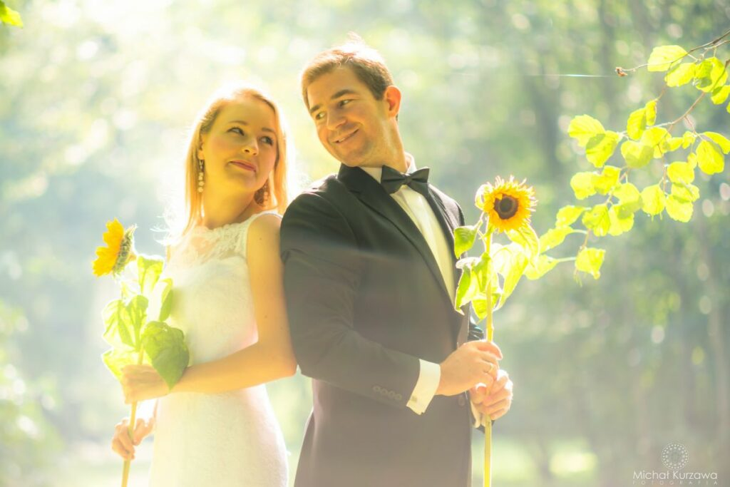 Sesja ślubna ze słonecznikami