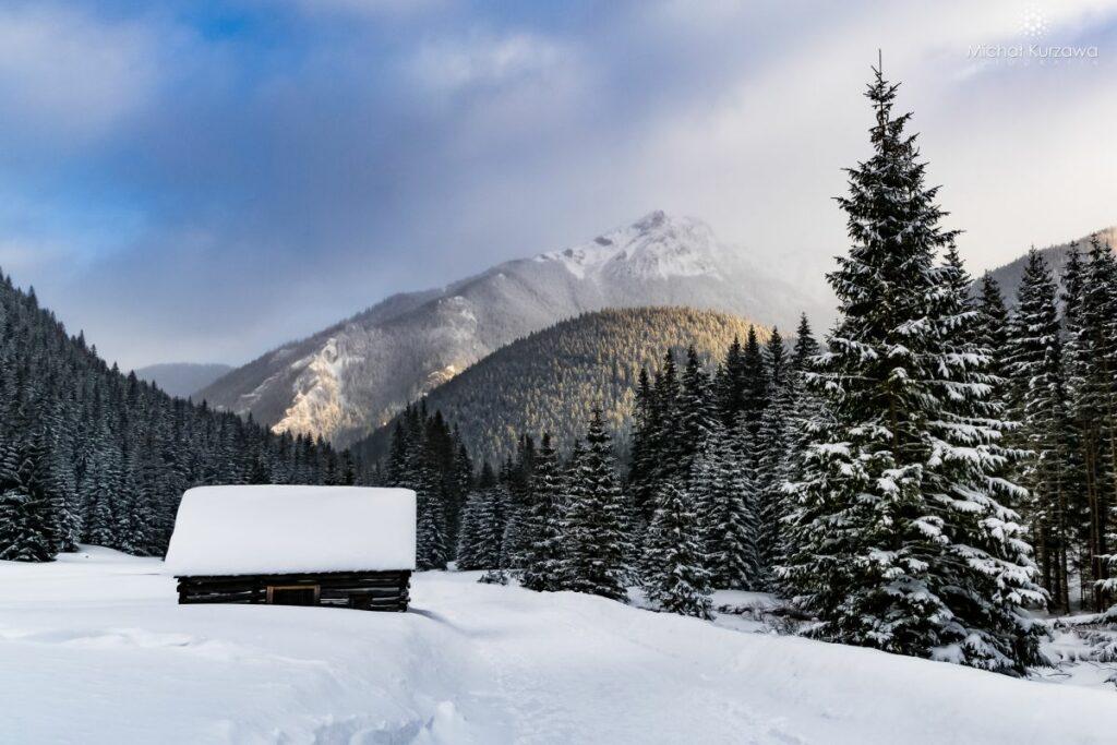 Zaśnieżona dolina Chochołowska w Zakopanem