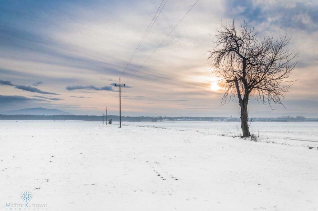 Fotografia Krajobrazowa Wrocław Ślęża W Zimowej Odsłonie